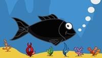 Küçük Kara Balık BMKM'de